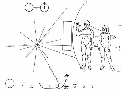послание пришельцам на Pioneer F