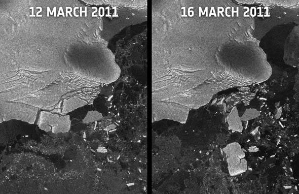 Японское цунами привело к образованию айсбергов в Антарктиде