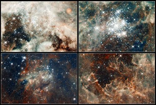 Вверху слева: скопление NGC 2070; Внизу слева: скопление NGC 2060; Вверху справа: скопление Hodge 301; Внизу справа: газ, разрушенный огромной звездой RMC 136