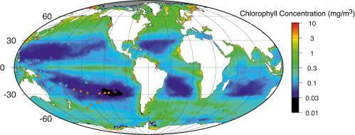 Новые оценки биомассы на Земле
