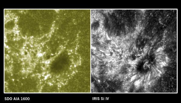 Телескоп IRIS сделал первые снимки Солнца