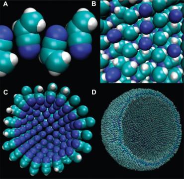Ученые разработали клеточную мембрану без кислорода